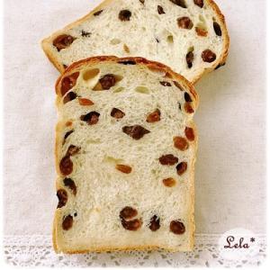 ハニーヨーグルト レーズン食パン