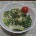 レタスとブロッコリー ツナのサラダ