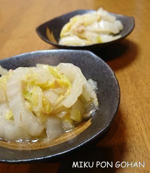 白菜とツナのあっさり中華煮