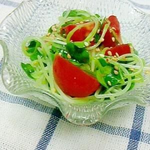 かいわれとプチトマトの和風サラダ