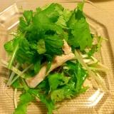 ザーサイと梅干のサラダ☆パクチー添え