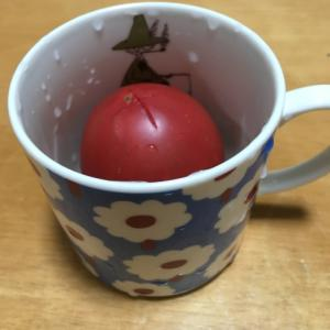 簡単♪トマトの湯剥き