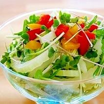 かいわれ大根とセロリのサラダ