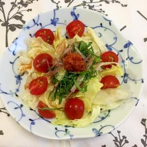 薬味と一緒に レタスとトマトのサラダ ♪