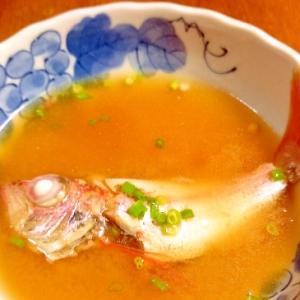 ノドグロの味噌汁