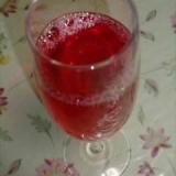 簡単♪赤紫蘇ジュース
