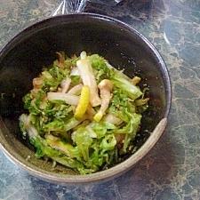 小さな野菜のおかず★白菜とスダチのさっぱり胡麻和え