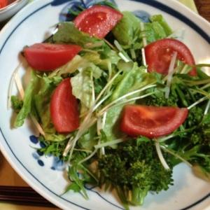 水菜とレタスのサラダ♡
