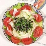 リーフレタス 、セロリのサラダ