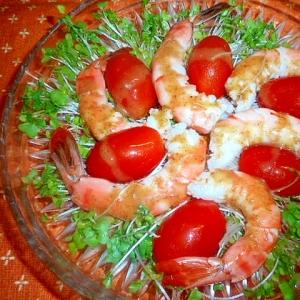エビとブロッコリースプラウトのおつまみサラダ