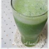 夏バテ予防!ゴーヤとりんご果汁のグリーンスムージー