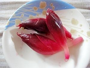 みょうがの赤梅酢漬け