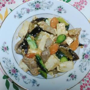 豆腐と胡瓜と茄子と牛肉の味噌炒め