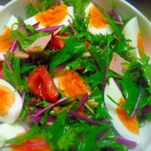 水菜と茹でたまごのサラダ