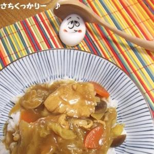 ノンオイル★鶏胸肉&野菜の和カリー