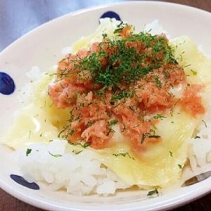 鮭マヨ&スライスチーズごはん♪