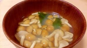 わかめとなめこのお味噌汁~豆腐の代わりにわかめ~