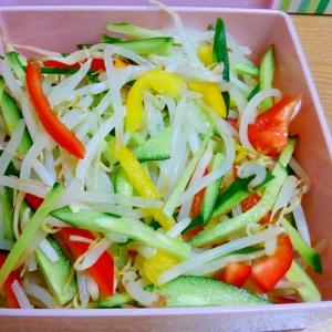 [低糖質料理]もやしとパプリカのサラダ