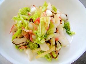 白菜と塩昆布桜エビの浅漬け