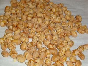 手作り煎り大豆