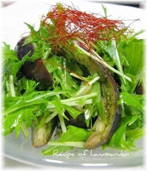 たっぷり夏野菜!ナスと水菜の柚子胡椒サラダ
