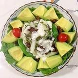 レーズン、アボガド、リーフレタス のサラダ