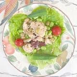 ほぐしサラダチキンに、枝豆、オクラ、ミニトマト