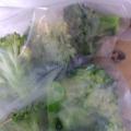 ブロッコリー。冷凍保存