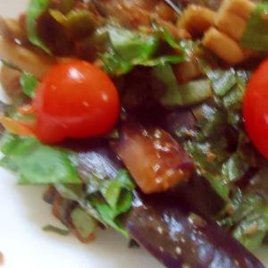 レンジ茄子サラダ