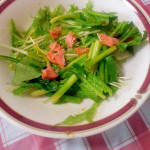 お手軽簡単♪鮭&小松菜&水菜のサラダ