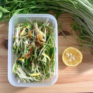 常備野菜に!パパッと水菜の和風サラダ