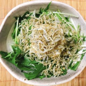 古くなったシラス活用!水菜と豆腐のシラスサラダ