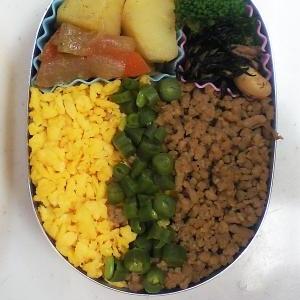 幼稚園弁当<保温>対策⑪…とりそぼろを使ったお弁当