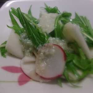 カブと水菜の塩麹ドレッシングサラダ