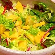 マンゴーとレタスのサラダ