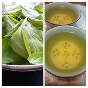 手作り柿の葉茶