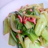 チンゲン菜のガーリック塩辛炒め
