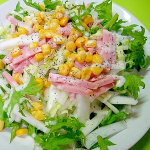 白菜とわさび菜とハムコーンのサラダ