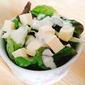 サニーレタスとベビーチーズのサラダ