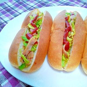 簡単!カレー風味☆ハムとキャベツのホットドッグ