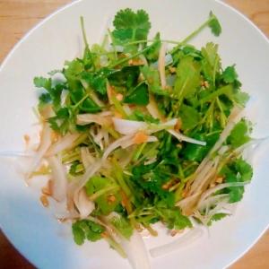 今が旬! 新玉ねぎとパクチーのサラダ