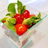 【簡単】ミニトマトとアイスプラントのグラスサラダ