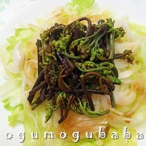 蕨と新玉葱のサラダ