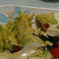 レタスとキャベツときゅうりとセロリのサラダ