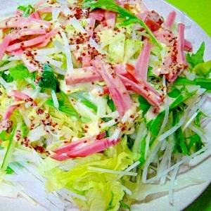 大根とレタスハムのサラダ☆粒マスタードドレッシング