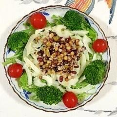 セロリと10種ミックスのサラダ