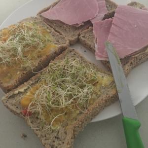 ハムとスプラウトでサンドイッチ