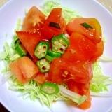 簡単レモンドレッシングでオクラとトマトのサラダ