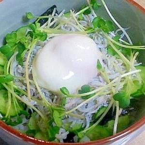温泉卵&しらすの丼