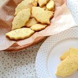 ハーブソルトクッキー